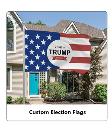 Political Election Flags